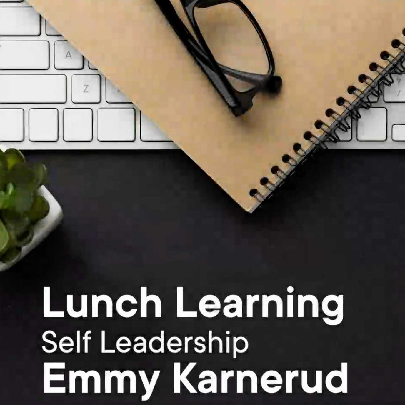 lunchlearning
